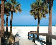 ........sand key florida | Sand Key Park - Sand Key Beach