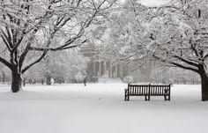 Winter on Syracuse University's Quad