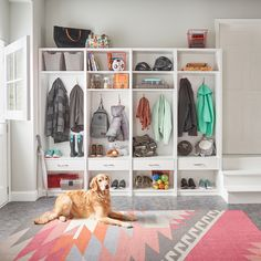 No more misplaced coats or muddy shoes in the house… even the family dog will know where his things go!  #EntrywayIdeas #MudroomDesign #HomeOrganization #InteriorDesign #ClosetMaid Household Organization, Home Organization, Organizing, Drawer Inserts, Mish Mash, Home And Family, Family Life, Small Changes, Storage Containers