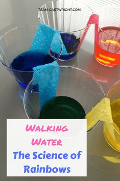 Teach your children about color mixing with an easy walking water project! Learn about rainbows and answer why the sky is blue. Plus try out some at home color chromatography and create a fun art project. #easySTEM #toddlerscience #preschoolscience #STEAMprojects #scienceactivity #easyscienceproject #sciencefairideas #scienceathome #summerscience #colorprojects #colorartproject Team-Cartwright.com