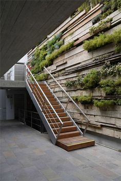 Organic architecture for your stairs - Architecture Organique Architecture Design, Green Architecture, Organic Architecture, Landscape Architecture, Landscape Design, Amazing Architecture, Biophilic Architecture, Computer Architecture, Creative Architecture