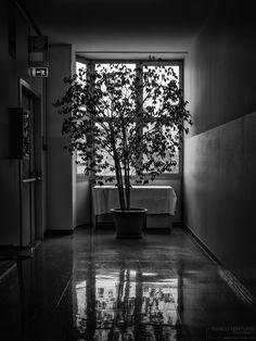 Se non sei un degente, nei corridoi degli ospedali si cammina di fretta. Si percorre (anzi si corre proprio…) con la voglia di uscire il prima possibile… fino a sbattere contro lo sport…