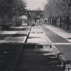 La Alfranca  #laalfranca  #zaragoza  #zaragozaciudadana #igerszgz #igerszaragoza  #instante #instazaragoza #streetphotography #bw #blancoynegro #blackandwhite #elgatoladrando #elgatoqueladra #huawei #huawei_es #huaweip9  #huaweiessence