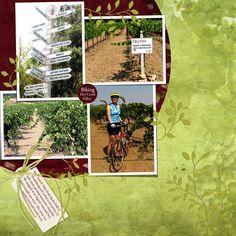 Biking in sonoma - Travel & Vacations - Gallery - Scrap Girls Digital Scrapbooking Forum