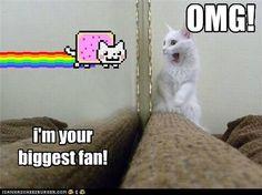 OMG! i'm your biggest fan!