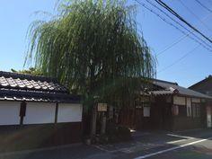 義仲寺 Otsu  Shiga  Japan