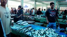 Fish Market People