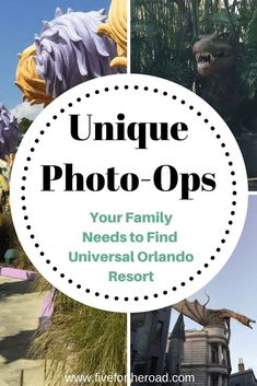 Nov 6, 2017 - Today we are sharing our 10 best places to take pictures at the Universal Orlando Resort for families. We have included our favorites and a few bonus spots!