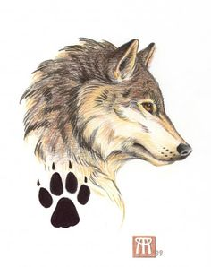 Wolf profile and paw print