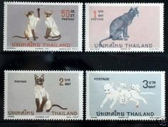cat stamps from Thailand