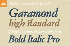 Check out Archive Garamond Bold Italic Pro by Archive Type Fonts on Creative Market