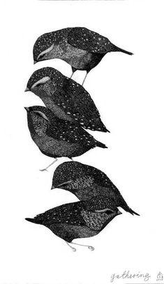 Birdies // Lucienne Rickard  // Inspiration by Eric #Bompard