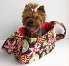 Sew your own Sammy Bag Dog Sling Carrier with this PDF sewing pattern! Perfect for the little dog who likes to tag along. Designed for dogs four to eight pounds, this Yorkies, Chihuahuas, Dog Clothes Patterns, Sewing Patterns, Quilting Patterns, Yorkshire Macho, Yorkie Haircuts, Dog Sling, Pekinese