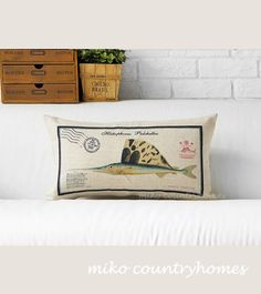 """$19 