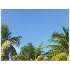 Island life #islamujeres #mexico