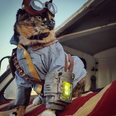 Fallout kitty cosplay ^_^