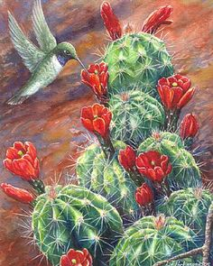 paintings of cactus | ... and Hedgehog cactus - Painting - Nature Art by Linda Parkinson