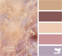 field tones beautiful for a homes color scheme.. boys room, girls room, living room, master bedroom, bathroom...