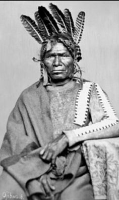 """The so called """"African American"""" is American Indian aka American Aborigine. Portrait of Shay-Wi-Zick Ojibwa Indian ● Chippewa ● Indians of North America Northeast ● Date: nd (Collected Smithsonian Institution Archive Native American Quotes, Native American Beauty, Native American Artists, Native American History, African History, Native American Indians, Cherokee Indians, Aboriginal History, Black Indians"""