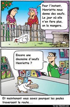 Henrietta la poule traverse la rue pour acheter des oeufs - did the chicken…