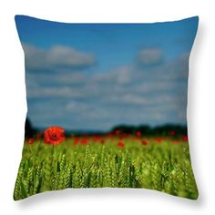 Field of gold Throw Pillow for Sale by Helen Kelly