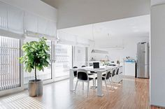 Modern Italian Apartment With Little Contemporary Style   Dining Room