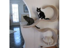 turn your cats into art - put them on the wall. Wallmounted cat shelf the DOUBLE WAVE by CloudNineCatTrees on Etsy