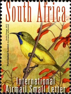 South African Plain-backed Sun-bird stamp 2012