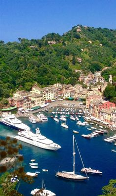 Luxurious Portofino, with its beautiful bay and artist inspiring buildings, is a great spot to explore the Ligurian Coastline. Beautiful walks, delicious seafood with boutique designer stores…MoreMore #ItalyTravelInspiration