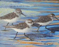 Sand Pipers - Painting by Edward Walsh