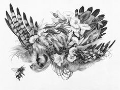 """Illustrators Christina Mrozik and Zoe Keller have collaborated on a series of detailed graphite drawings, created over two seasons in a tiny studio in rural West Michigan. The illustrations will be collected and released this January in """"Intricacies,"""" a hardcover, cloth-bound, offset-printed book."""