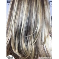 Cool tone highlights by @trishubucolorsalon  Call to book a free consultation. 813.801.9700 using  @olaplex @redken5thave @redkenofficial  @magiclightener #olaplex #balayage #modernsalon #bestoftheday #blondegirl #beautylaunchpad #btcpics #hairporn #hairdye #hair #hairfeed #hairgasm #haircolor #hairoftheday #hairsalon #hairofinstagram #igivegoodhair #haircare  #pinteresthair #hairpainting  #ombré #ontrend #hairgoals #polishgirl #americansalon #MarcJacobs #blonde #blondehair #curls…