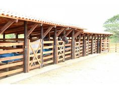 Horse Shed, Cow Shed, Horse Stalls, Building A Dog Kennel, Diy Dog Kennel, Walk In Chicken Coop, Arte Equina, Cattle Barn, Horse Shelter