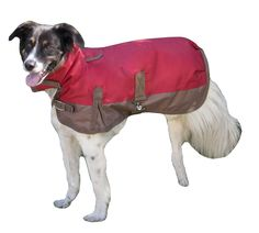 Fashion Pet Horse Blanket Waterproof Dog Coat Large Red
