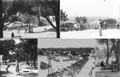 Dehesa de la Villa Naturaleza viva: La transformación parcial de la Dehesa de la Villa en parque urbano, 1969 – 1974