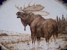 Moose Pyrography - Bull Moose by Adam Owen