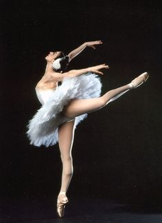 The American Ballet Theatre's dictionary of ballet terms. Site features a video accompaniment for many of the entries, including demonstrations of dance movements. Video viewing requires QuickTime plug-in.