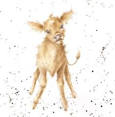 Wrendale Designs beautifully illustrated Country Set collection of greeting cards featuring quirky images of best loved wildlife - page 4 Art And Illustration, Watercolor Animals, Watercolor Paintings, Watercolors, Wrendale Designs, Photo Images, Cute Animal Pictures, Belle Photo, Animal Drawings