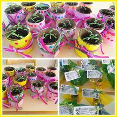 Cadeau fête des mères 2014: oeillets d'Inde dans des petites conserves colorées