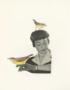 Vexed by a variety of vireos.   Original by viviennestrauss (Art & Collectibles, Mixed Media & Collage, Paper, Vivienne Strauss, surreal, collage, birds, humor, woman, bird art, vireo)