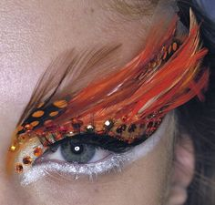 Orange feather eye.