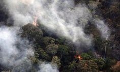 El Amazonas sufre una agresión permanente causada por el hombre