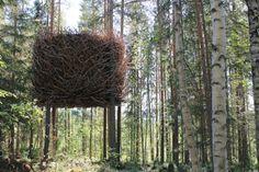 a hotel room like a bird nest in Sweden