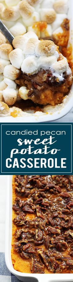 Creamy candied pecan sweet potato casserole is easy to make and will leave your guests wanting more and begging for the recipe. Sweet Potato Pecan, Sweet Potato Casserole, Sweet Potato Recipes, Thanksgiving Recipes, Fall Recipes, Holiday Recipes, Veggie Dishes, Side Dishes, Candied Pecans