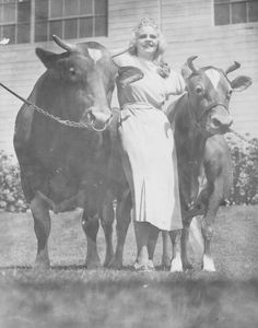 Miss Angela Ficker posing with Adohr Farms Grand Champion Guernseys, circa 1935. Adohr Farms Collection. San Fernando Valley History Digital Library.
