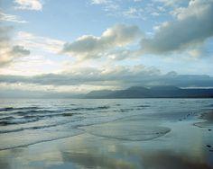 Walks around Port Douglas/ Cape Tribulation, QLD