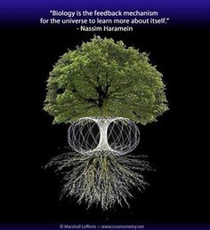 trees and the brain