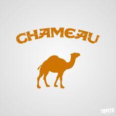 Camel traduit en français.