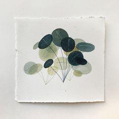 Small Plant studies on Behance
