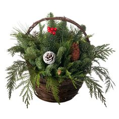 I bet you could go to your local tree farm and see if they have any clippings for this project. OR, you could go take a basket into the woods and find these things yourself. Holiday Basket Center Piece